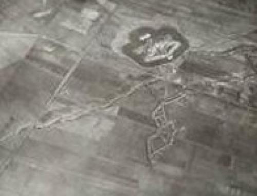 Operatie Fort van Stabroek